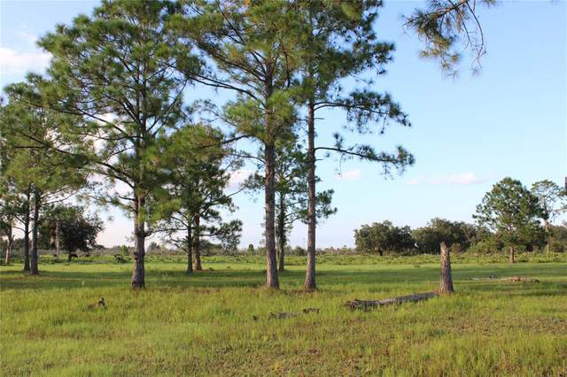 W Frostproof Road, Frostproof, FL 33843 (MLS #K4901463) :: Globalwide Realty