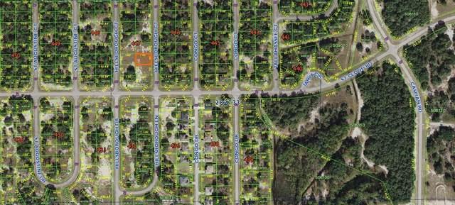 1304 Hillsborough Court, Poinciana, FL 34759 (MLS #K4901531) :: Charles Rutenberg Realty