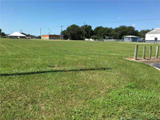 667 S 5TH Avenue, Wauchula, FL 33873 (MLS #L4714058) :: Rabell Realty Group