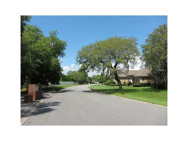 1154 Lake Deeson Woods Lane, Lakeland, FL 33805 (MLS #L4714746) :: The Duncan Duo Team