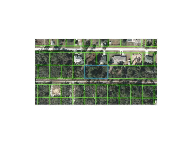 221 Caspian Tern Avenue, Sebring, FL 33870 (MLS #L4715015) :: Griffin Group