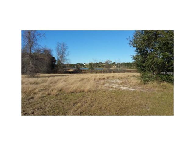 Lake Montgomery Boulevard, Clermont, FL 34715 (MLS #L4719143) :: Griffin Group