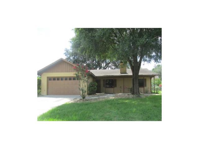 8749 Plantation Ridge Boulevard, Lakeland, FL 33809 (MLS #L4721495) :: Griffin Group