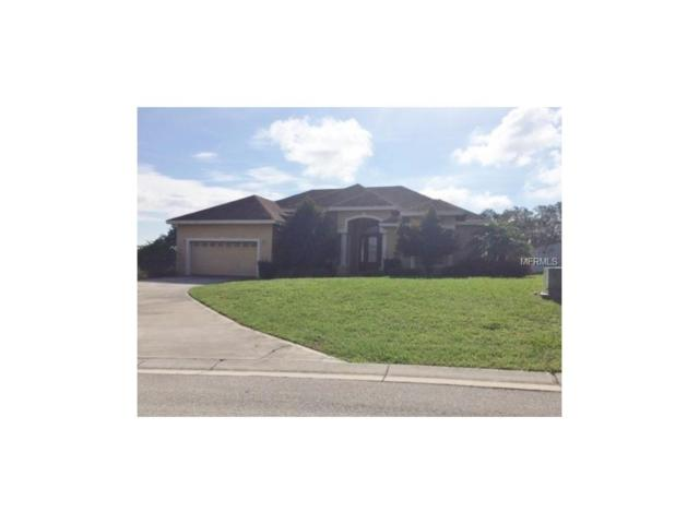 2968 Vintage View Circle, Lakeland, FL 33812 (MLS #L4721532) :: Gate Arty & the Group - Keller Williams Realty