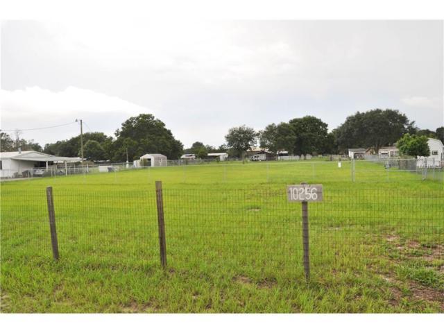 10256 Rachel Cherie Drive, Polk City, FL 33868 (MLS #L4722053) :: RealTeam Realty