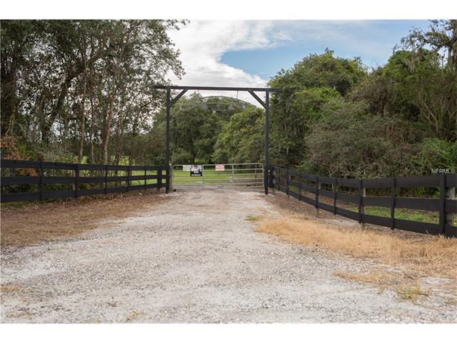 875 Aldo Road, Babson Park, FL 33827 (MLS #L4722591) :: The Duncan Duo & Associates