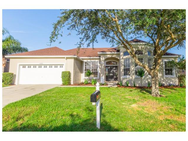 6335 Alamanda Hills Drive, Lakeland, FL 33813 (MLS #L4722677) :: Gate Arty & the Group - Keller Williams Realty