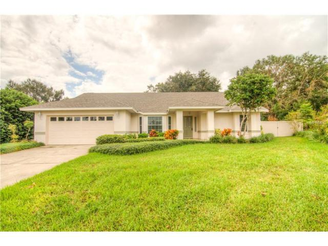 2000 Roxburgh Lane, Lakeland, FL 33813 (MLS #L4723076) :: NewHomePrograms.com LLC