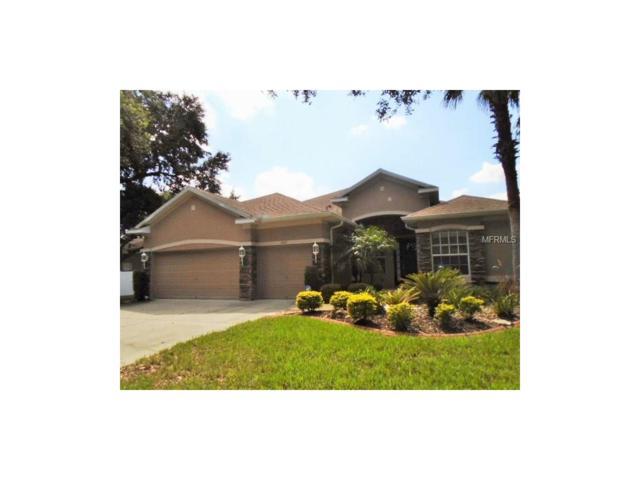 2417 Blue Stone Court, Valrico, FL 33594 (MLS #L4723196) :: Griffin Group