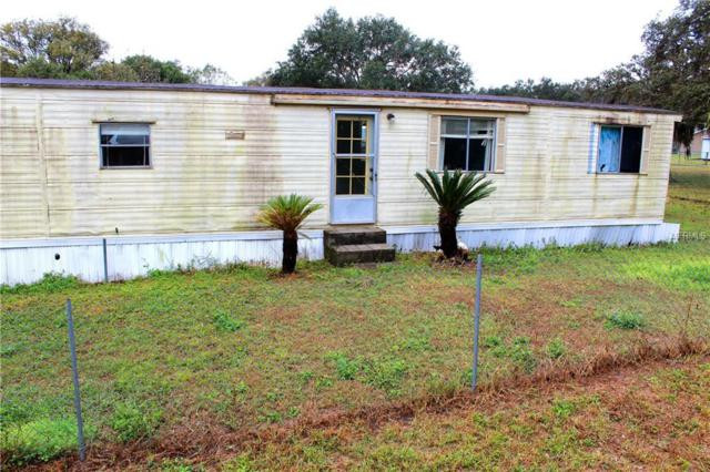 2511 Futch Road, Lakeland, FL 33811 (MLS #L4724978) :: Gate Arty & the Group - Keller Williams Realty