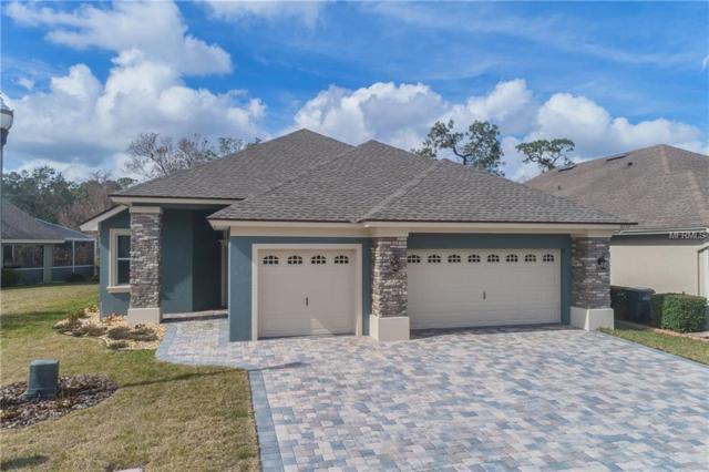 8256 Lake James Drive, Lakeland, FL 33810 (MLS #L4725134) :: McConnell and Associates