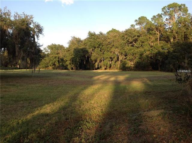 285 Canterwood Lane, Mulberry, FL 33860 (MLS #L4725406) :: The Duncan Duo Team