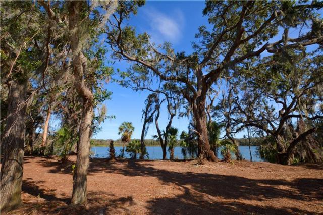 Christina Lake Drive, Lakeland, FL 33813 (MLS #L4725550) :: The Duncan Duo Team