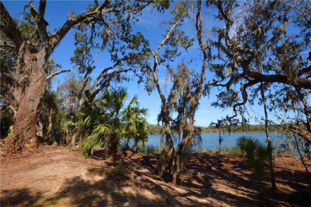 Christina Lake Drive, Lakeland, FL 33813 (MLS #L4725574) :: The Duncan Duo Team