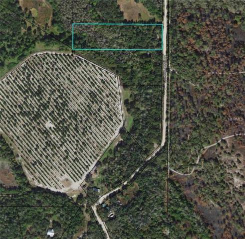 4228 Oak Hills Ranch, Zolfo Springs, FL 33890 (MLS #L4725607) :: The Duncan Duo Team