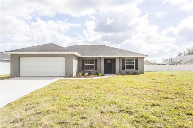 1255 W Georgia Street, Bartow, FL 33830 (MLS #L4725677) :: Dalton Wade Real Estate Group