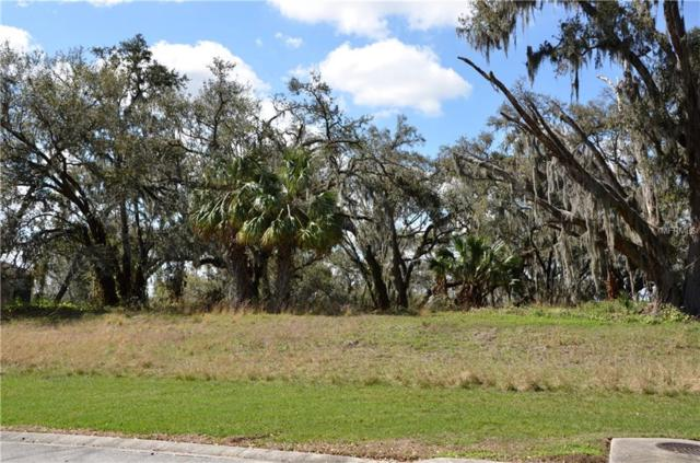 Canterwood Lane, Mulberry, FL 33860 (MLS #L4725682) :: Cartwright Realty