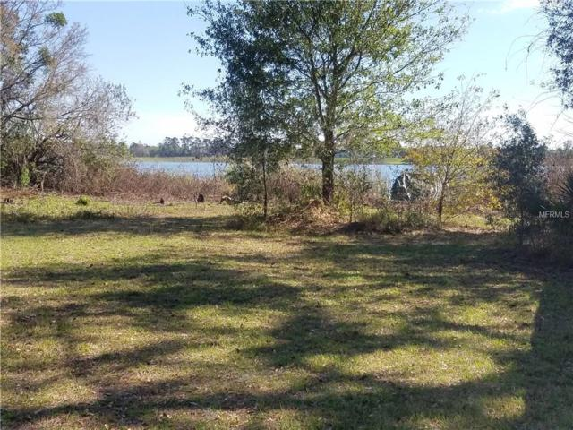 479 Waterview Drive, Polk City, FL 33868 (MLS #L4725758) :: Godwin Realty Group