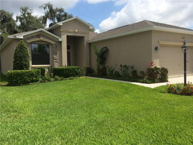 6234 Silver Leaf Lane, Lakeland, FL 33813 (MLS #L4726204) :: Griffin Group