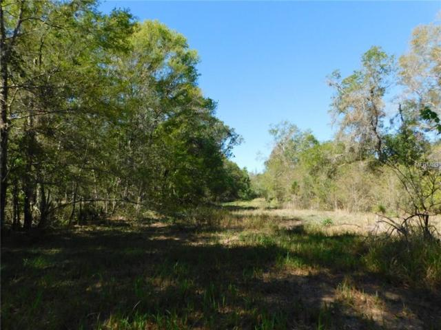 10950 Us Highway 98 N, Lakeland, FL 33809 (MLS #L4726265) :: Griffin Group