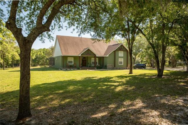 4019 Shady Meadow Drive, Plant City, FL 33567 (MLS #L4726354) :: Griffin Group