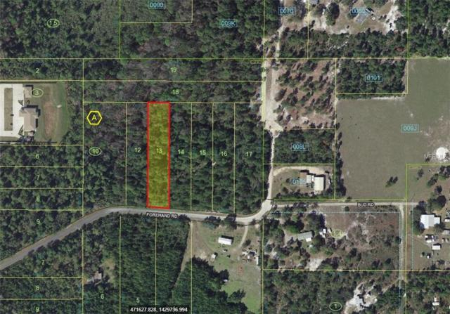 Forehand Road, Davenport, FL 33896 (MLS #L4900303) :: Griffin Group