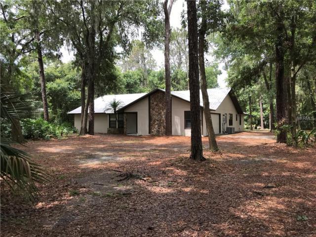 4236 Homewood Lane, Lakeland, FL 33811 (MLS #L4900845) :: The Duncan Duo Team