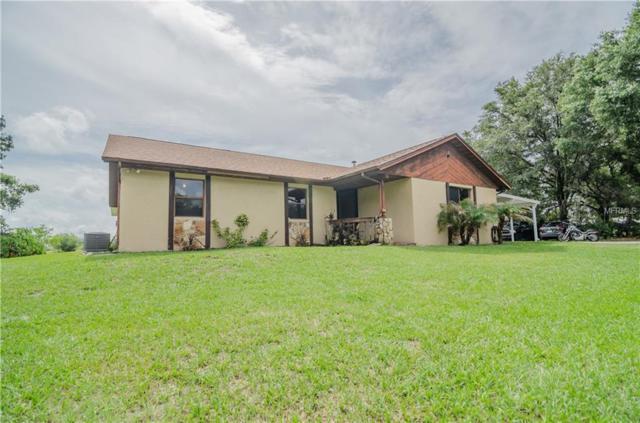 8441 Pinecone Drive, Lakeland, FL 33809 (MLS #L4900854) :: The Duncan Duo Team
