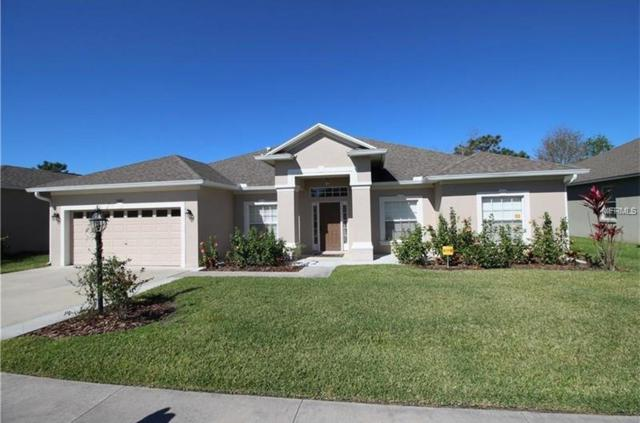6465 Evergreen Park Drive, Lakeland, FL 33813 (MLS #L4900925) :: Griffin Group