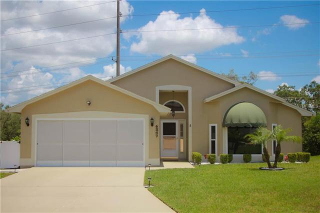 6247 Egret Drive, Lakeland, FL 33809 (MLS #L4900958) :: Lovitch Realty Group, LLC
