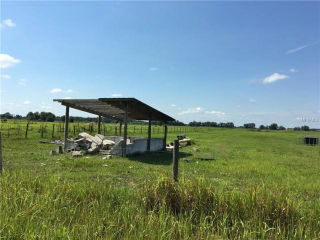 Rhynn Road, Wauchula, FL 33873 (MLS #L4901479) :: The Duncan Duo Team