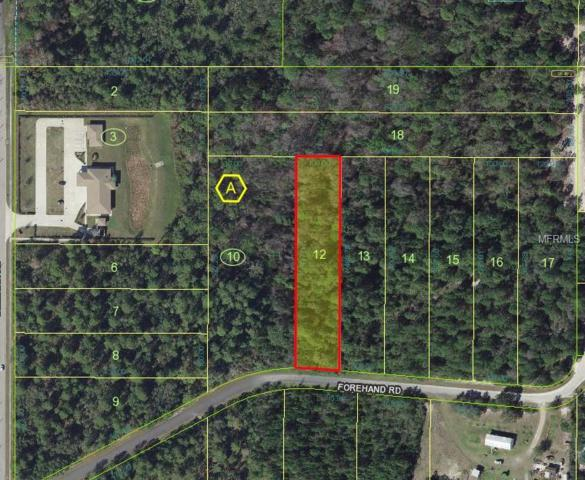 Forehand Road, Davenport, FL 33896 (MLS #L4901742) :: Griffin Group