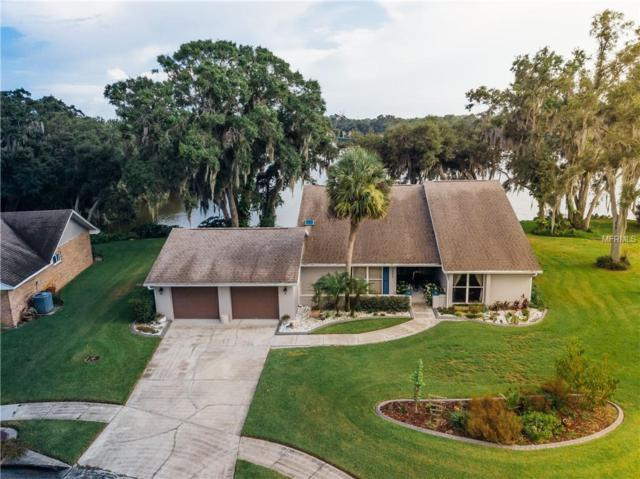 3660 Emerald Lane, Mulberry, FL 33860 (MLS #L4901991) :: Griffin Group