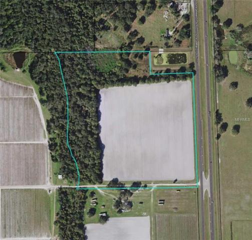 S Us Hwy 17, Zolfo Springs, FL 33890 (MLS #L4902009) :: The Duncan Duo Team