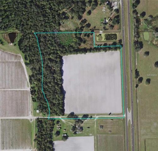 S Us Hwy 17, Zolfo Springs, FL 33890 (MLS #L4902009) :: Burwell Real Estate