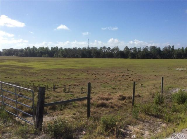 Us Hwy 17 S, Fort Meade, FL 33841 (MLS #L4902202) :: Griffin Group