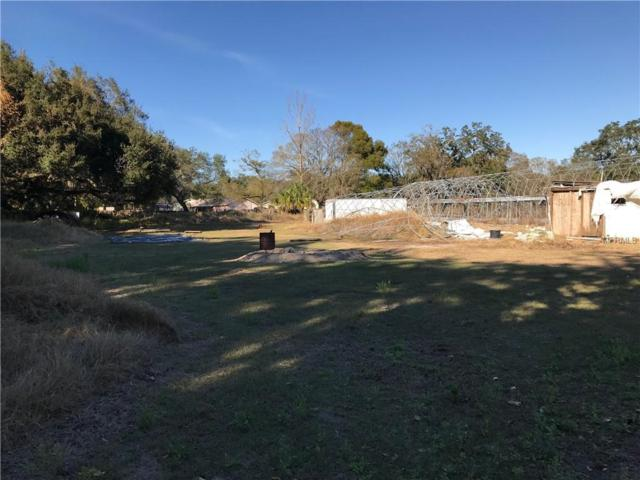 11010 Riverview Drive, Riverview, FL 33578 (MLS #L4902301) :: Medway Realty