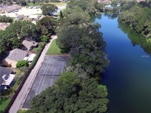 980 Lake Cove Trail, Lakeland, FL 33813 (MLS #L4902775) :: Griffin Group