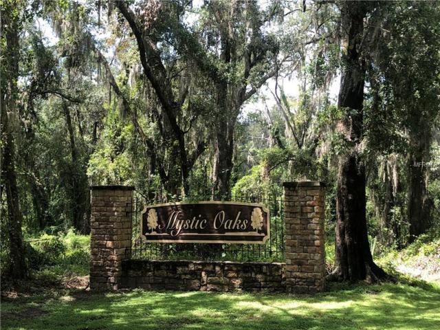 Mystic Oaks Drive, Plant City, FL 33563 (MLS #L4903128) :: The Duncan Duo Team