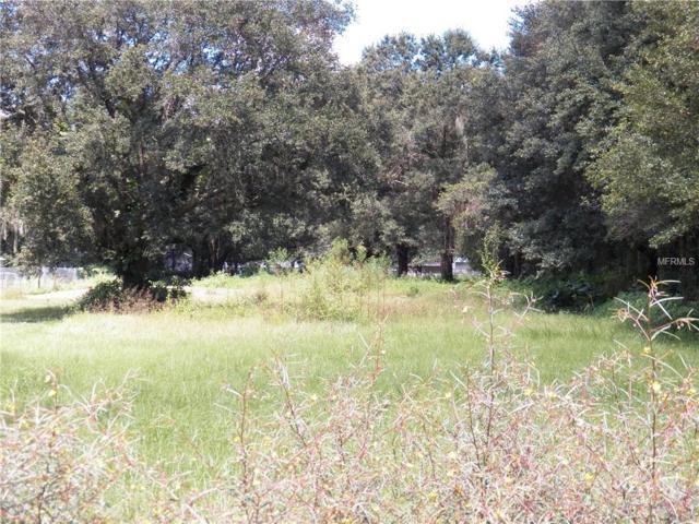 5047 Plantation Drive, Lakeland, FL 33811 (MLS #L4903316) :: The Duncan Duo Team