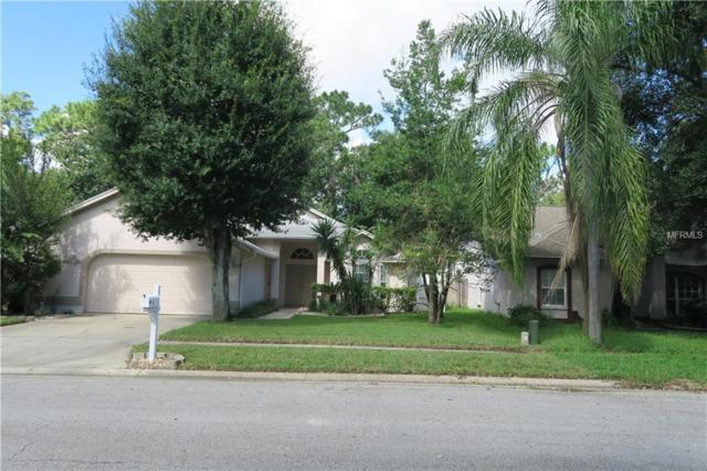 14880 Sugar Cane Way, Clearwater, FL 33760 (MLS #L4903408) :: Lock and Key Team