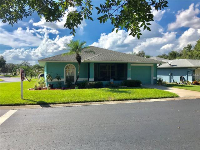 6334 Silver Lakes Drive E, Lakeland, FL 33810 (MLS #L4903450) :: Gate Arty & the Group - Keller Williams Realty