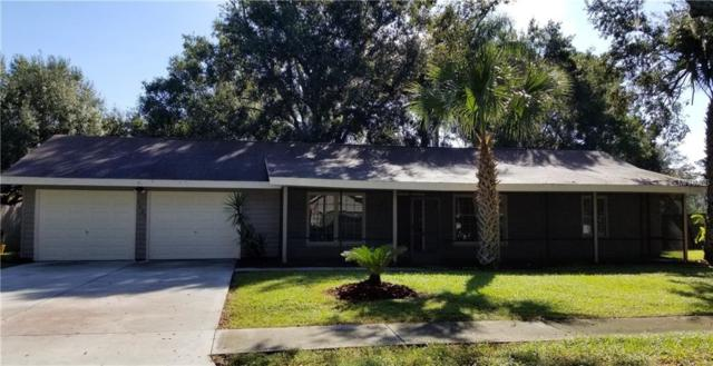 3025 Cross Fox Drive, Mulberry, FL 33860 (MLS #L4903564) :: Team Suzy Kolaz