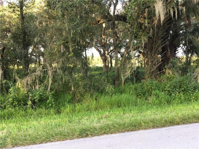 Lake Branch Road, Bowling Green, FL 33834 (MLS #L4903686) :: The Lockhart Team