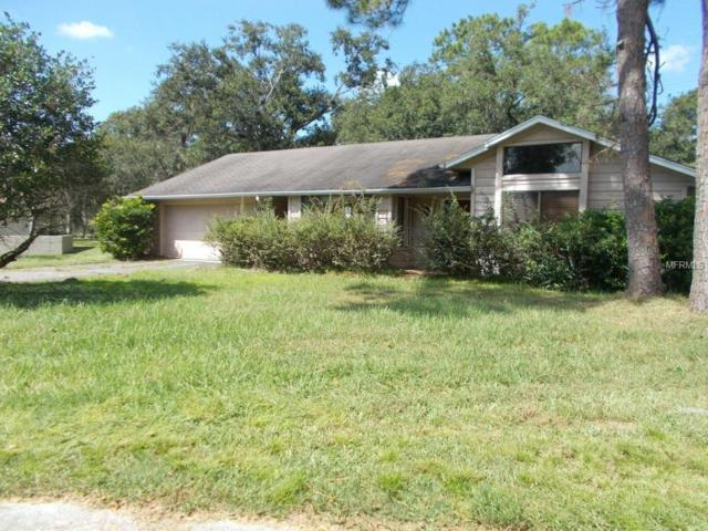 3744 Sapphire Court, Mulberry, FL 33860 (MLS #L4903697) :: Welcome Home Florida Team