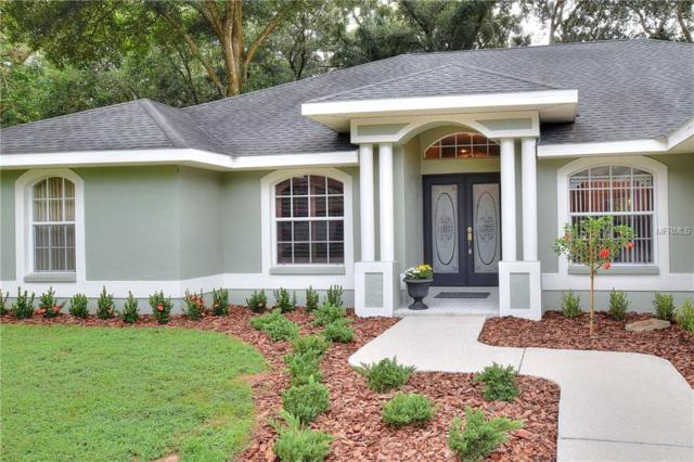 406 Summit Chase Drive, Valrico, FL 33594 (MLS #L4903860) :: Dalton Wade Real Estate Group
