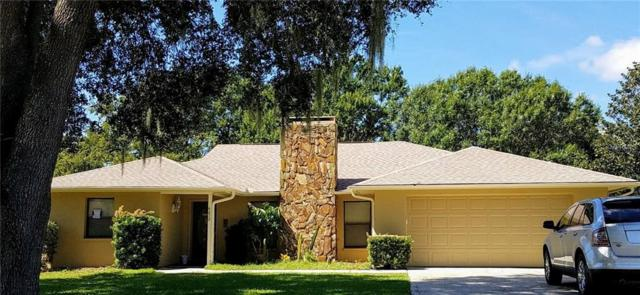 4232 Stonehenge Road, Mulberry, FL 33860 (MLS #L4903964) :: Welcome Home Florida Team
