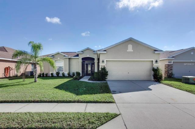 3316 Fiddle Leaf Way, Lakeland, FL 33811 (MLS #L4904019) :: Welcome Home Florida Team