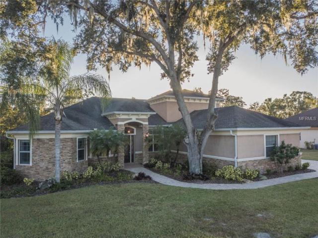 650 Christina Lake Drive, Lakeland, FL 33813 (MLS #L4904266) :: The Duncan Duo Team