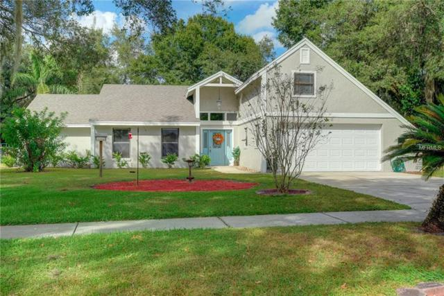 4202 Stonehenge Road, Mulberry, FL 33860 (MLS #L4904339) :: Team Suzy Kolaz